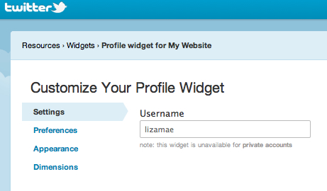 Create WordPress Twitter Widget - Enter User Name