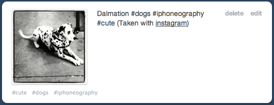 Instagram posted on Tumblr with Hash tags